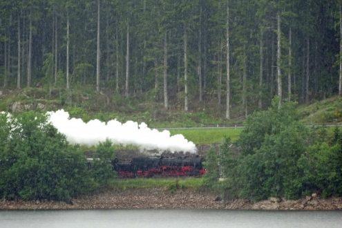 Volldampf am Ufer des Schluchsee (Einfahrt Bahnhof Seebrugg)